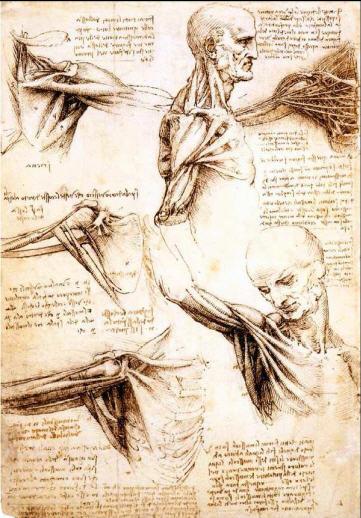 达芬奇的绘画论
