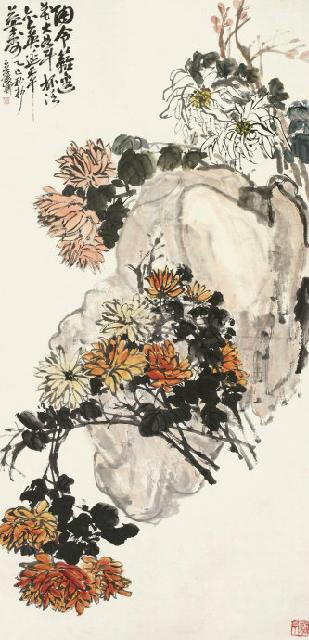《菊石图》