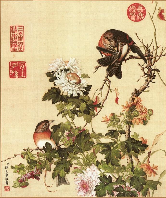 《仙萼长春图册》