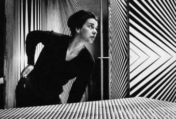 创造性英国女画家布里奇特·路易斯·赖利  Bridget Louise Riley