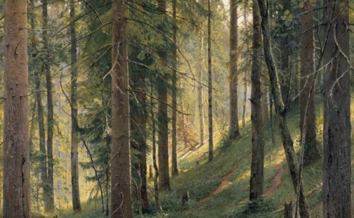 俄罗斯画家伊万·希什金   Ivan Shishkin