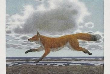 加拿大画家亚历克斯·科尔维尔 Alex Colville