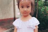 儿童画-铜钱草(水彩画)-王思棋-国际青少年美术家