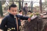 儿童画-鹅鹅鹅(丙烯画)-甄梓勋-国际青少年美术家