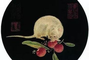 妙哉_古今中国九位书画大师画老鼠