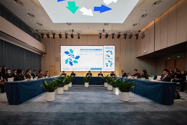 全国首个自贸区公共文化发展专业委员会成立